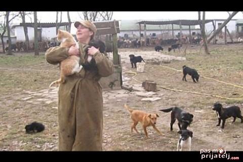 Volonteri brinu o psima